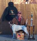 Handler: Tommy Smith, Odenville, AL